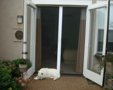TALL WHITE FRENCH ROLL-AWAY SCREEN DOORS FOR OUTSWINGING DOORS WITH BLINDS