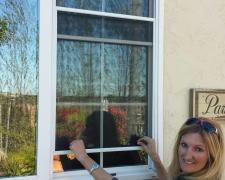 PASS-THRU WINDOW SCREEN IN USE